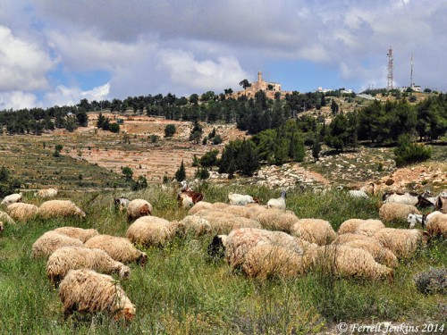Nebi Samwil from the south. Photo by Ferrell Jenkins.