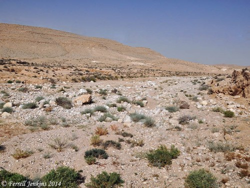 A dry wadi in the wilderness of Zin. Photo by Ferrell Jenkins.