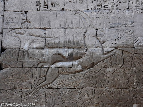 Relief from the mortuary temple of Ramses III. Photo by Ferrell Jenkins.