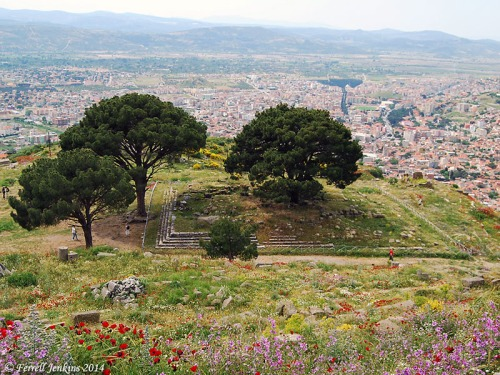 Site of the Zeus Altar at Pergamum. Photo by Ferrell Jenkins.