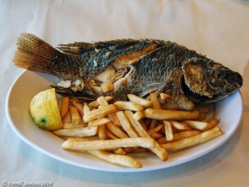 Saint Peter's fish is a common meal at restaurants around the Sea of Galilee. Photo by Ferrell Jenkins.