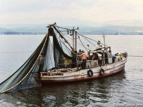 Fishing boat using purse-seine on Sea of Galilee - March 1992