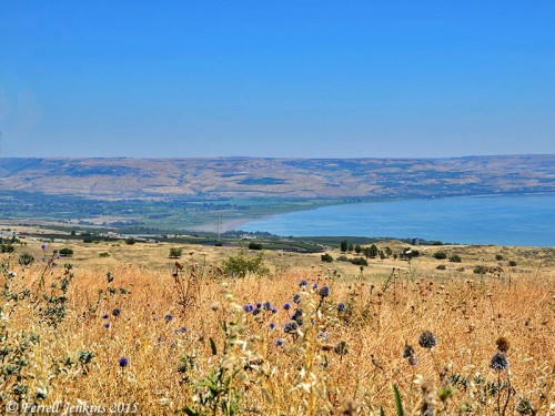 The plain of Bethsaida taken from the hills above Capernaum and east of Chorazin. Photo by Ferrell Jenkins.