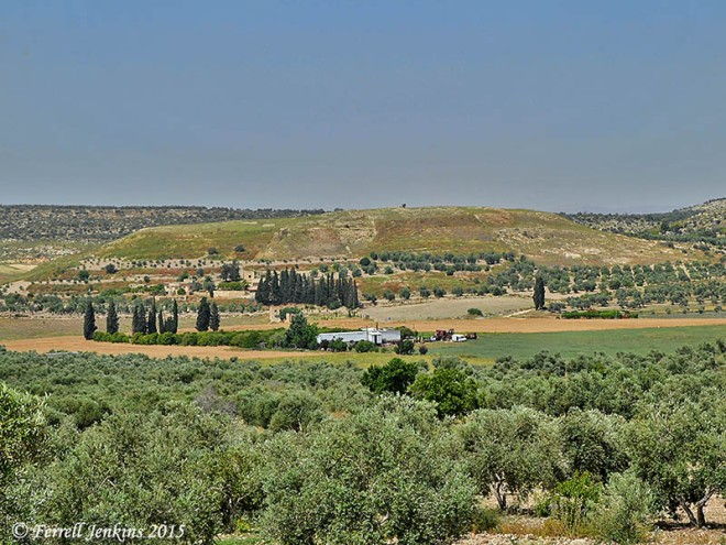 Image result for dothan israel