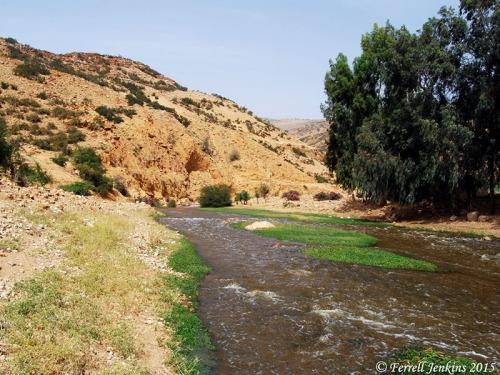 The Jabbok River near Mahanaim. Photo by Ferrell Jenkins.
