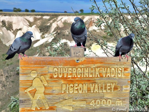 Pigeon Valley sign in Cappadocia. Photo by Ferrell Jenkins.