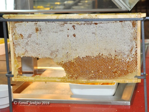 Honey comb at the Ron Beach Hotel breakfast bar. Photo by Ferrell Jenkins.