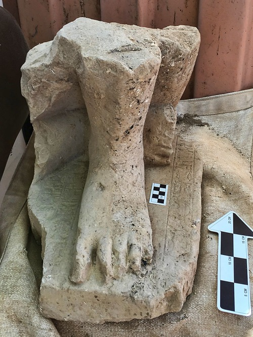The monumental Egyptian statute of a high official from the Middle Kingdom in Egypt, found in the administrative palace at Hazor, north of the Sea of Galilee in Israel. (Photo credit: Shlomit Bechar)