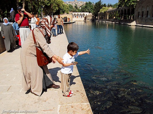 Children enjoy feeding the sacred carp in the pool. Photo by Ferrell Jenkins.