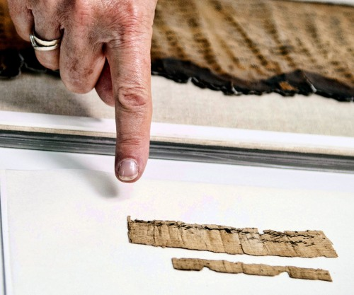 Hebrew papyrus document from 7th century B.C. preserved by the Israel Antiquities Authority. Photo by Shai Halevi.