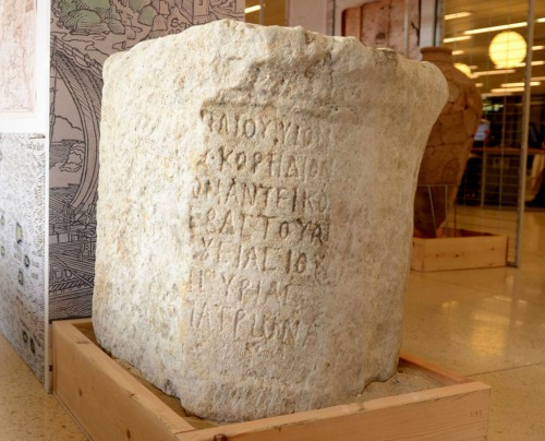 Stone inscription with the name of Marcus Paccius, governor of the province of Judea and Syria. Photo by Jenny Carmel in HaAretz.