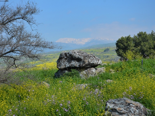 The 4,000 year old dolmen.View facing north toward Mount Hermon. Photographic credit: Gonen Sharon, Tel Hai College.