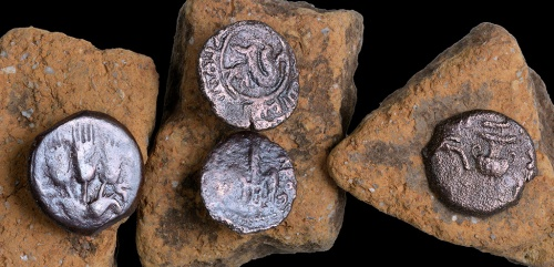 The ancient coins that were discovered in the excavation. Photographic credit: Clara Amit, courtesy of the Israel Antiquities Authority