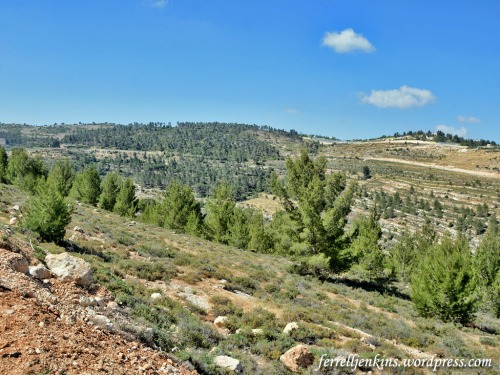 A view of the Rephaim Valley from near the entry of Ein Yael park. Photo by Ferrell Jenkins.