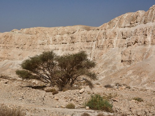 Cliffs on the west side of the Arabah a few miles south of the Dead Sea. Photo by Ferrell Jenkins.