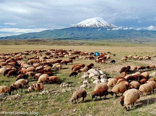 Greater Mount Ararat, in the land of Ararat, near the Iranian border. Photo by Ferrell Jenkins.
