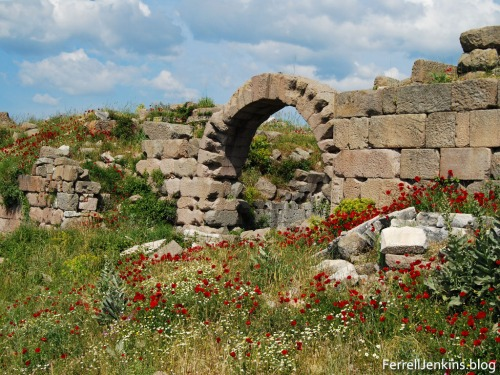Spring flowers among the ruins at Pergamum. Photo by Ferrell Jenkins.