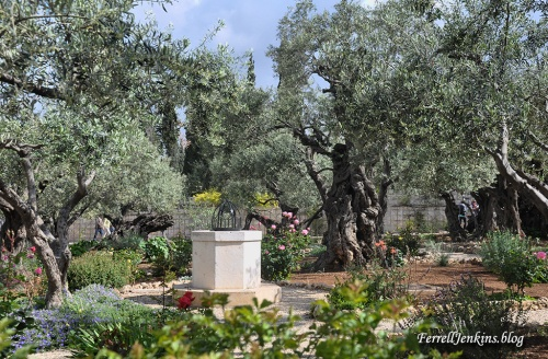 The traditional Garden of Gethsemane where Jesus prayed to the Father prior to his arrest, trials, and crucifixion. FerrellJenkins.blog.