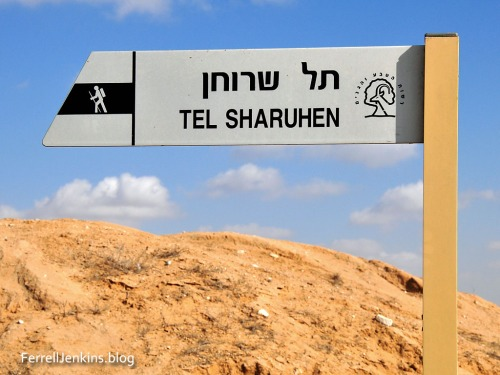 Sign identifying Tel Sharuhen. Photo: ferrelljenkins.blog.